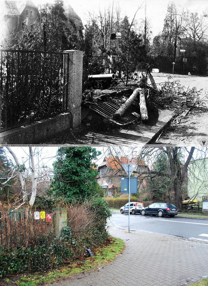 Rejon ciężkich walk na Borku.Opuszczone niemieckie stanowisko oporu na skrzyżowaniu al.Wiśniowej z al.Wiązową. (Kirsch Allee - Rüstern Allee)