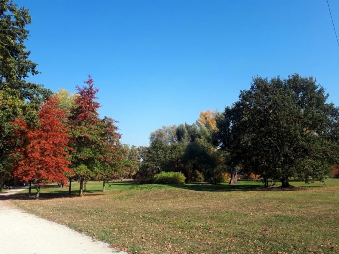 Park Popowicki
