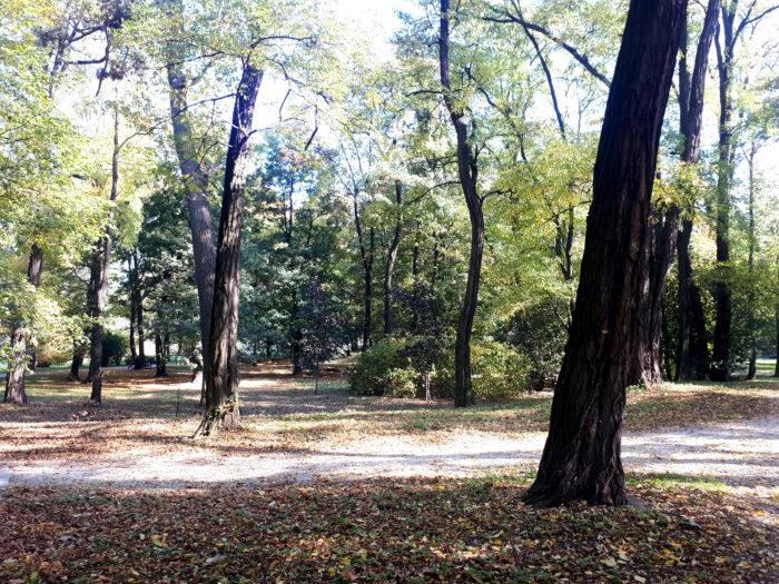 Park Zachodni