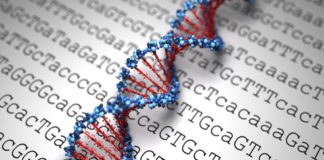Badania Genetyczne OGEN